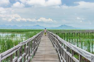 Bueng Bua rickety boardwalk in Hua Hin with mountain backdrop